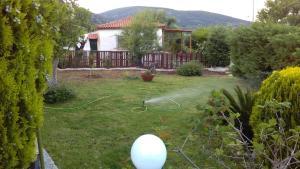 A garden outside Dimitris House