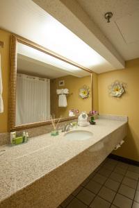 A bathroom at MCM Elegante Hotel and Suites – Dallas