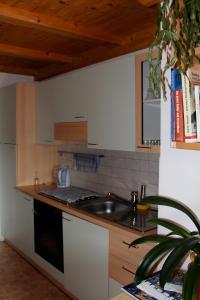 A kitchen or kitchenette at Verleierhof