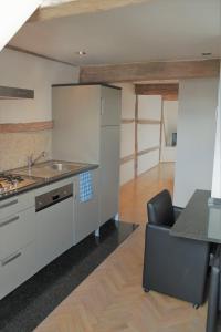 Een keuken of kitchenette bij Apartment De Maasnacht