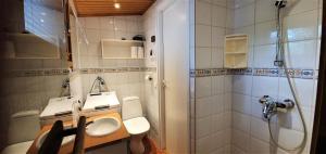 A bathroom at Levilehto Apartments