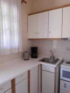 Кухня или мини-кухня в Georgia Apartments & Studios Corfu