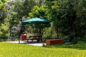 A garden outside Casa do Lagareiro