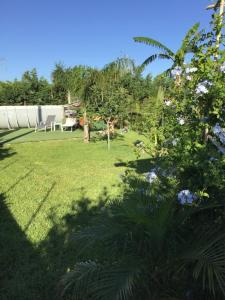 A garden outside Villa Rogis