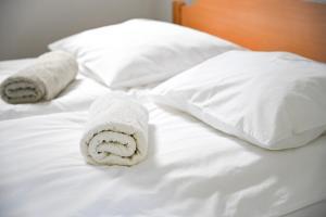 Postelja oz. postelje v sobi nastanitve Apartma pri Bizjaku