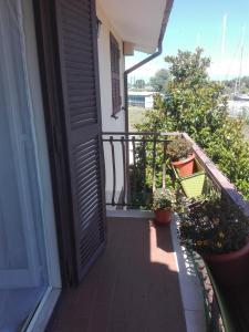 A balcony or terrace at Santy's Rooms BAGNO CONDIVISO2piano no lift no aria condizionata