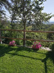 A garden outside Antica Dimora