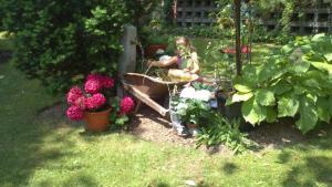 A garden outside Ferienhüsli