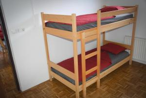 A bunk bed or bunk beds in a room at Apartma Vidmar