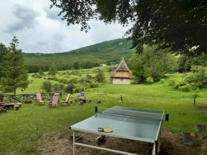 Ping-pong facilities at B&B Villa Olimpia or nearby