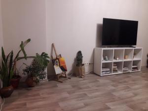 Телевізор і / або розважальний центр в 3 rooms apartment in the historical center of Chernihiv!