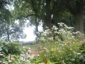 A garden outside Buitenplaats Bemelen