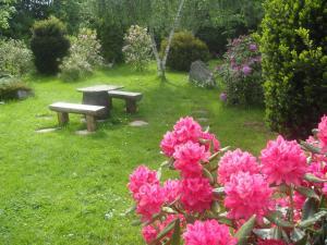 A garden outside Landgasthof Kemter