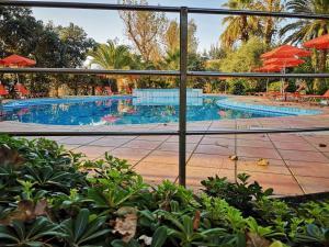 Πισίνα στο ή κοντά στο Marita's Apartments