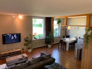 A television and/or entertainment centre at Willem Appartments Sauerland