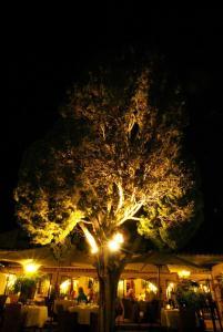 Jardín al aire libre en Casa Del Maco