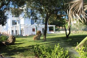 A garden outside Villa La Conchiglia Rooms