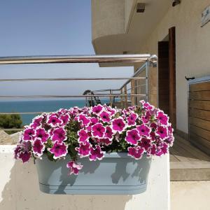 Balcone o terrazza di B&B alla Canale