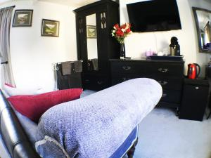 A television and/or entertainment center at Hillside Bed and Breakfast