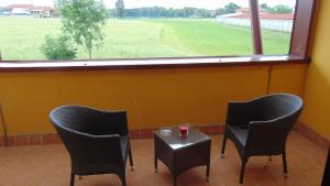 A balcony or terrace at Turin Airport Hotel & Residence