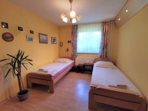 A bed or beds in a room at Apartma Franko