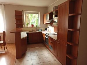A kitchen or kitchenette at Atrium - Wrzeszcz - 2