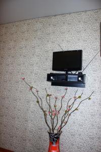 Телевизор и/или развлекательный центр в Apartment on Prospekt Truda