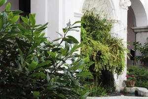 A garden outside Ave Gratia Plena