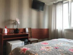 Televízia a/alebo spoločenská miestnosť v ubytovaní Hotel Hokejka