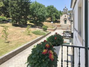 Un balcón o terraza de Guest House El Padrino
