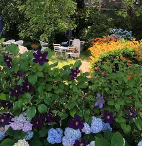 A garden outside Queen Anne Inn