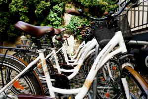 Cycling at or in the surroundings of Garden Living - Boutique Hotel