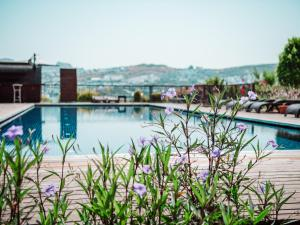 The swimming pool at or near Costa Farilya Special Class Hotel Bodrum