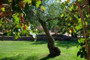 Jardín al aire libre en Agroturismo Finca Sant Blai