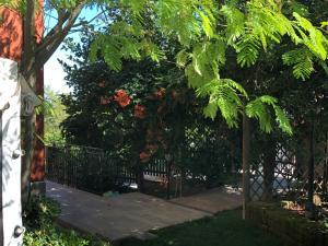 A garden outside la casetta del tesoro