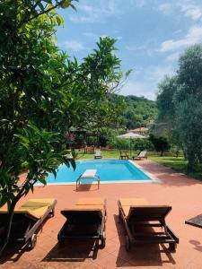 The swimming pool at or near Villa Claudia
