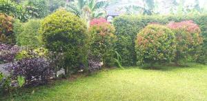A garden outside Villa Shinta Managed by Bubu Point
