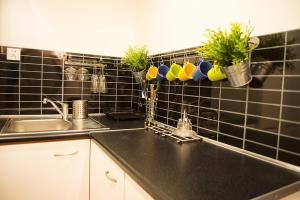 Kuchnia lub aneks kuchenny w obiekcie Pokoje Krowoderska