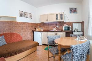 A kitchen or kitchenette at Apartmány Tamír