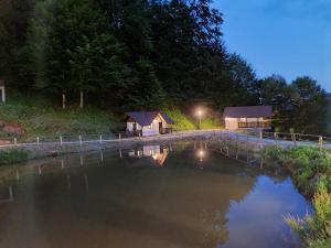 The swimming pool at or near Satu Muscelean
