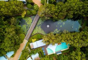 A bird's-eye view of Sanctuary Palm Cove