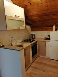 A kitchen or kitchenette at House Mihaela&nina