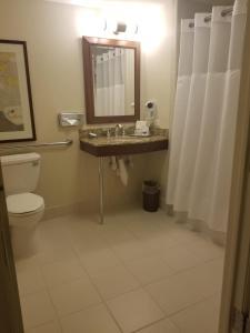 Un baño de San Carlos Hotel New York