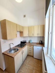 A kitchen or kitchenette at Apartament Kleopatra