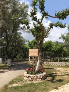 A garden outside Poros Beach studios