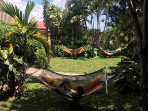 A garden outside Costa Rica Backpackers
