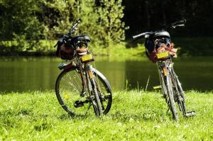 Radfahren an der Unterkunft Altneudörflerhof Hotel Garni oder in der Nähe