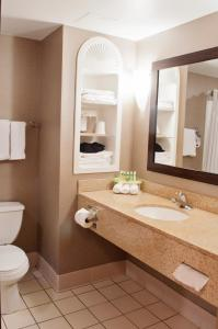 A bathroom at Holiday Inn Express Hotel & Suites Pittsburgh-South Side, an IHG Hotel