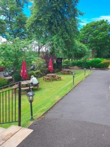 A garden outside Number 10 Hotel