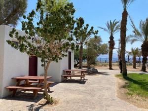 SPNI Eilat Field School
